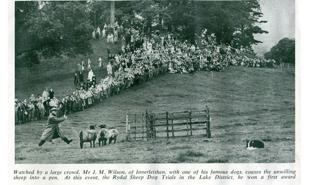 1949 Rydal Show sheepdog trials